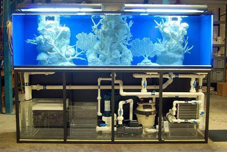 Hệ Thống Lọc Nước Cho Bể Cá